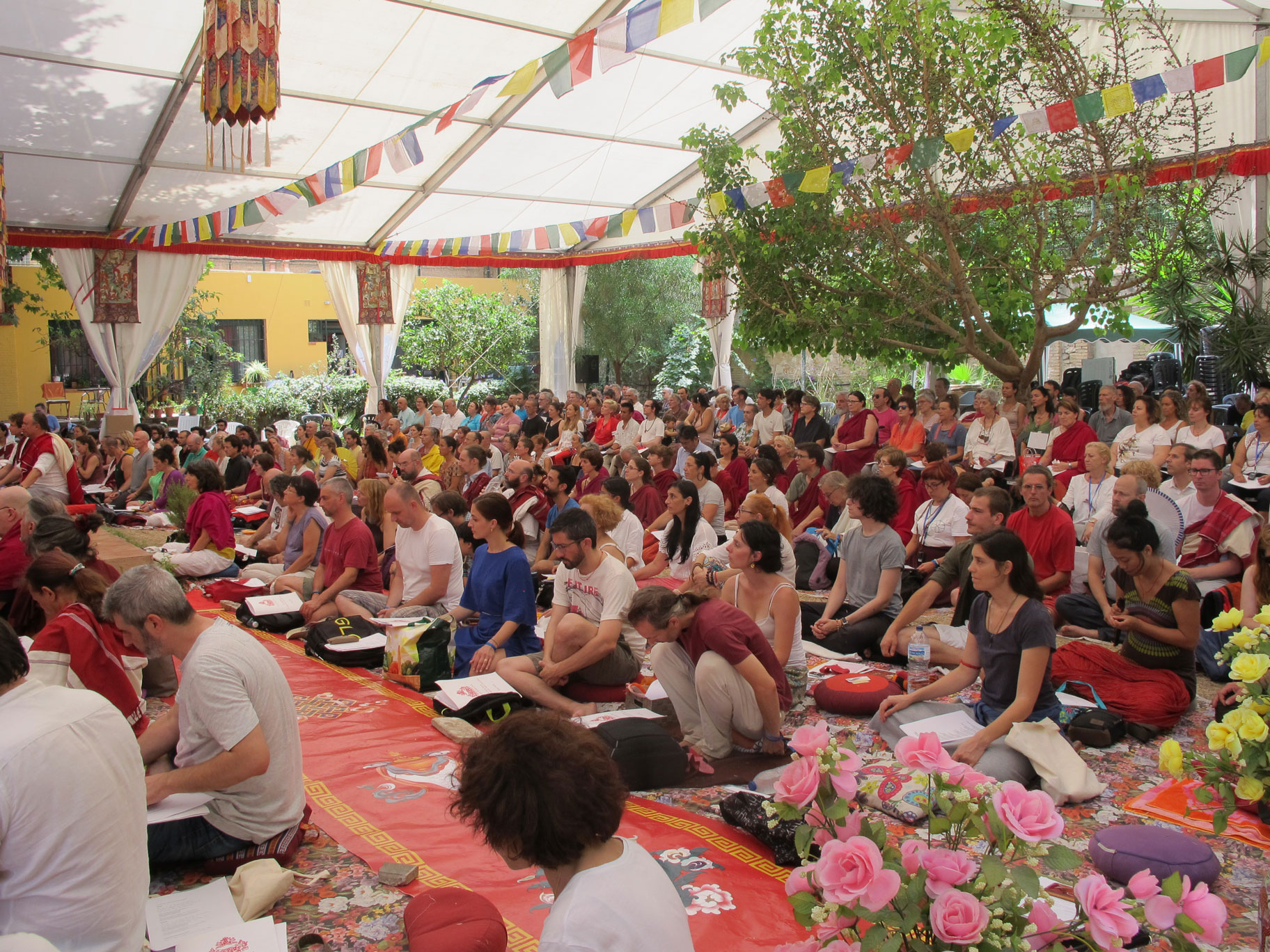 SS-Dudjom-Rinpoche-Sangye-Pema-Zhepa-evento-valencia-julio-2019-6